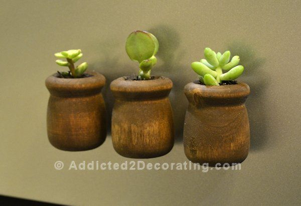 DIY: Miniature Succulent Planter Refrigerator Magnets..... they were super cute, but the magnets weren't very strong so they didn't stay on the fridge. And my cat thought destroying them would be a fun game, so they only lasted about a week.