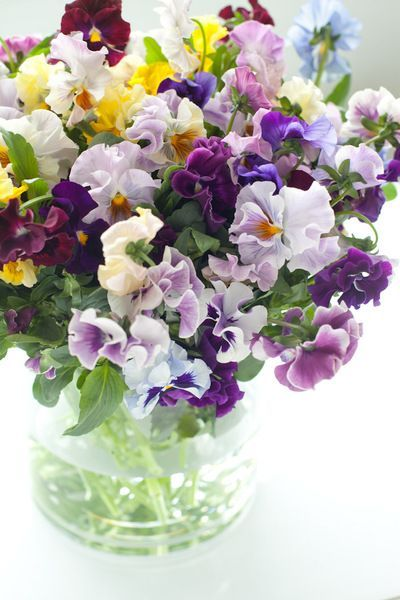 Floral Arrangement of purple white and yellow pansies