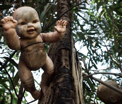 Τα 6 Πιο Ανατριχιαστικά Δάση Του Κόσμου