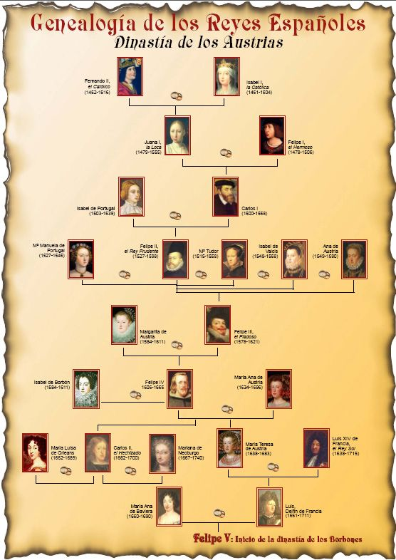 Genealogy of the Austrians, spanish royal dynasty preceding the Borbons, current spanish royal house