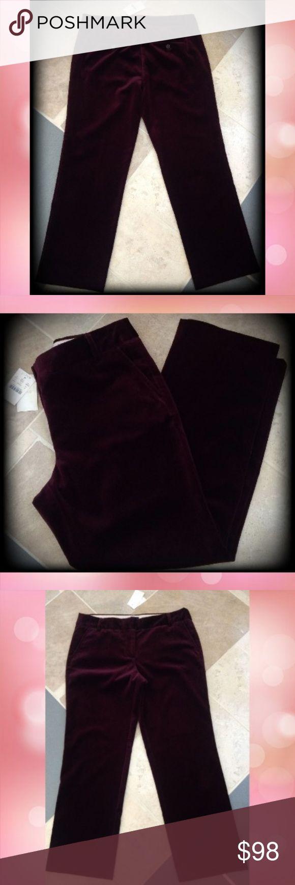 bordeaux color pants