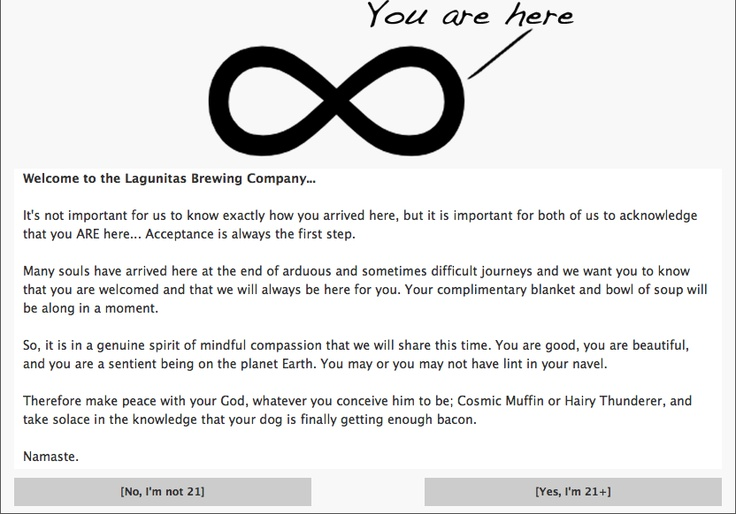 Really clever (legally required) age-checker for the Lagunitas Brewing Company's website. They could've easily just asked if the user was 21 and over or not, but the funny copy adds some character to the character, which is a great first impression, considering it's the first screen a user visiting the website would see.
