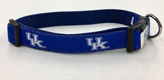 University of Kentucky Dog Collar