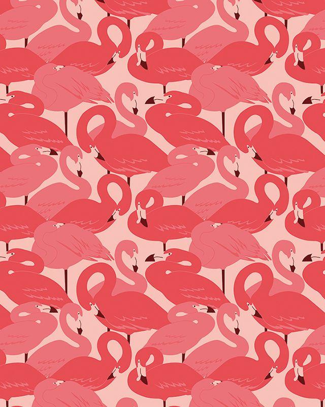 Pattern Design - Esther Lara - Flamingos