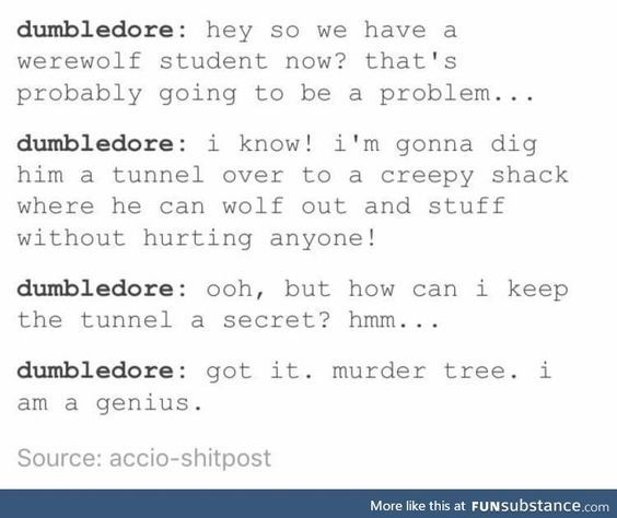 Dumbledore was stoned about 100% of the time. I respect that.