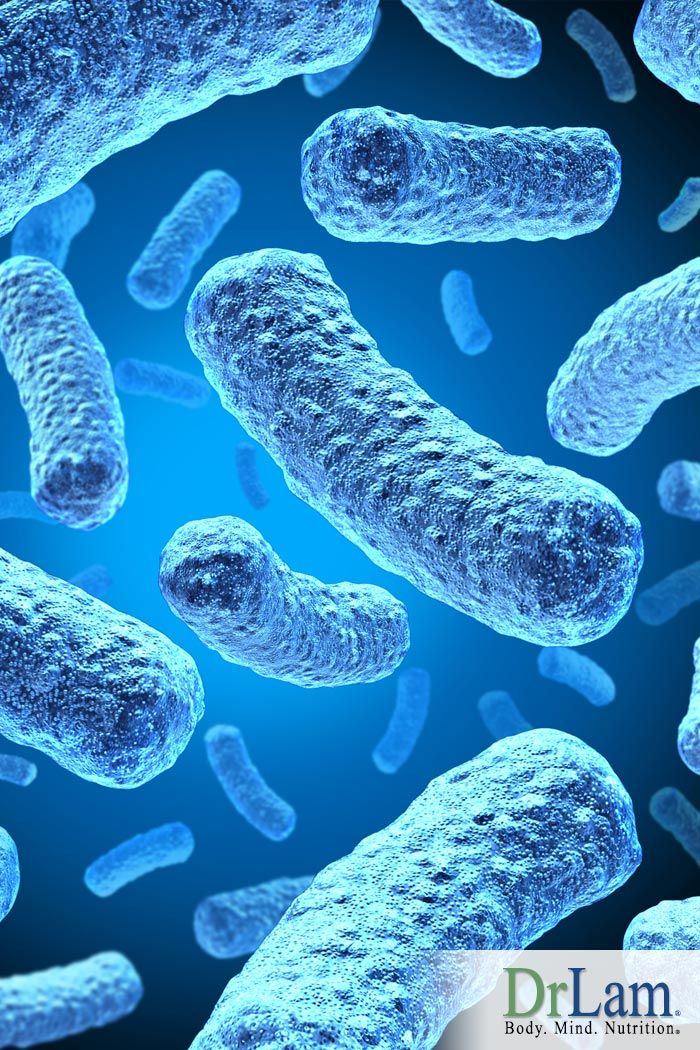 Post Bacterial and Post Viral Fatigue - Introducing Stealth Infections