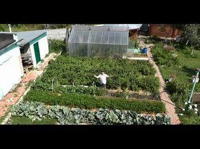 Выращивание кабачков, цуккини и патиссонов хитрым способом - YouTube
