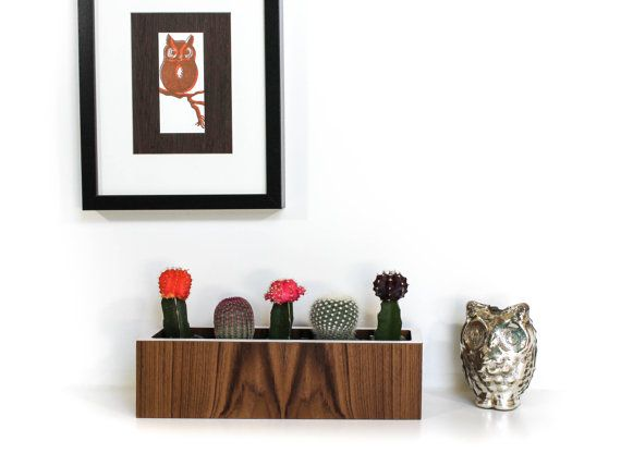 "12"" Teak Planter, Succulent Planter, Teak and White, Wall Hanging OR Tabletop, actual size 12.5"" x 3.375"" sq, plants not included"