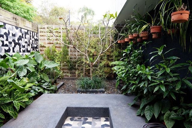 casa de marcelo rosenbaumSao Paulo, Marcelo Rosenbaum, Hanging Plants, Cris Rosenbaum, Fashion Design, Hanging Flower, Gardens Layout, Tropical Gardens, Backyards Landscapes