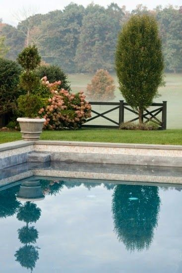 Top 25 ideas about the deep end on pinterest gardens for Gardens around pools