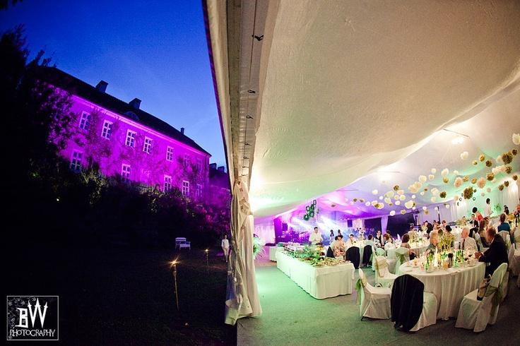 wesele w plenerze pod namiotem