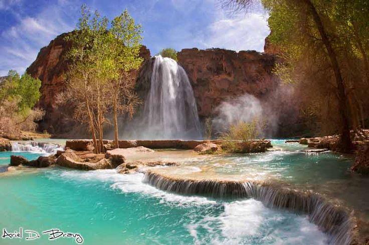 Siete pronti a esplorare le affascinanti cascate color smeraldo di Havasu Canyon? Scopriamo le Havasu Falls, il gioiello nascosto di Havasu Canyon