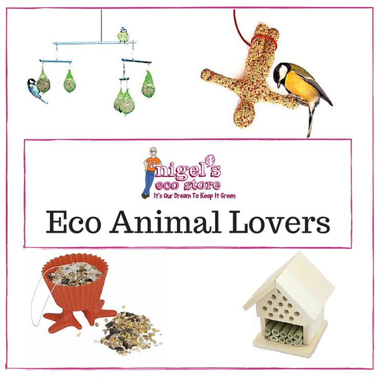 Looking to reduce your pet's carbon paw-print? Or want to encourage birds into your garden, without feeding them full of pesticides? Read on for our top tips for eco animal lovers.