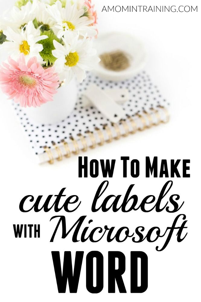 Ever see those cute labels people have on their mason jars? In this post, I'll teach you how to make cute labels using Microsoft Word!