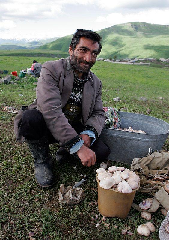 Armenian man with mushrooms