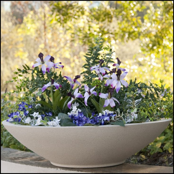 Outdoor Commercial Planters 46 best commercial planters images on pinterest commercial classic and modern style low bowl planters in stock or custom sizes large commercial fiberglass planter bowls work for outdoor or indoor applications workwithnaturefo