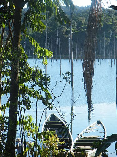 Brokopondo stuwmeer, Suriname http://www.travelbrochures.org/96/south-america/go-to-suriname