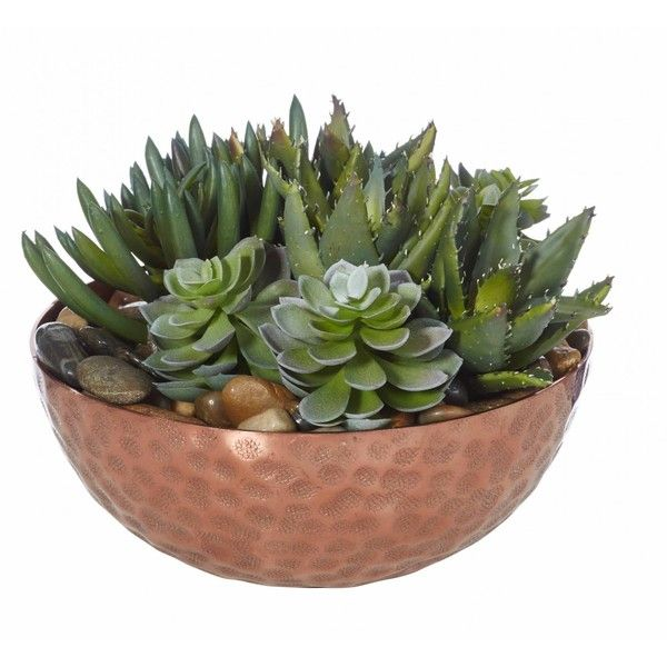 Aloe in Copper Bowl ($ 245) ❤ gefällt bei Polyvore mit Haus, Wohnkultur, …