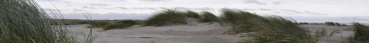 Texel | vakantiehuisjes, appartementen en hotels op Texel, vakantie eiland met strand