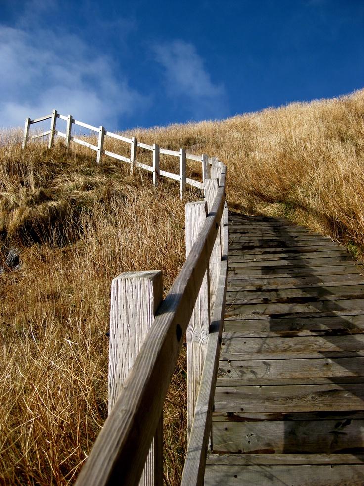 hiking Signal Hill in St.John's Newfoundland Canada