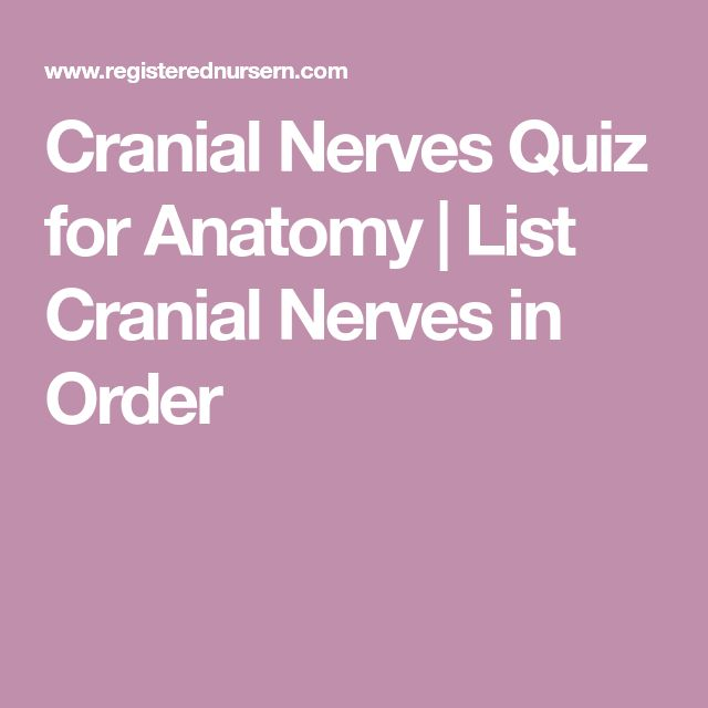 Cranial Nerves Quiz for Anatomy | List Cranial Nerves in Order