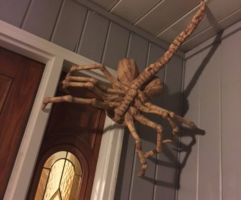 diy facehugger halloween decoration - Halloween Ceiling Decorations