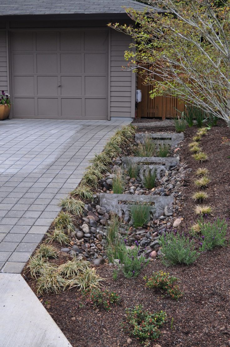 24 best images about rain garden designs on pinterest for Rain garden design