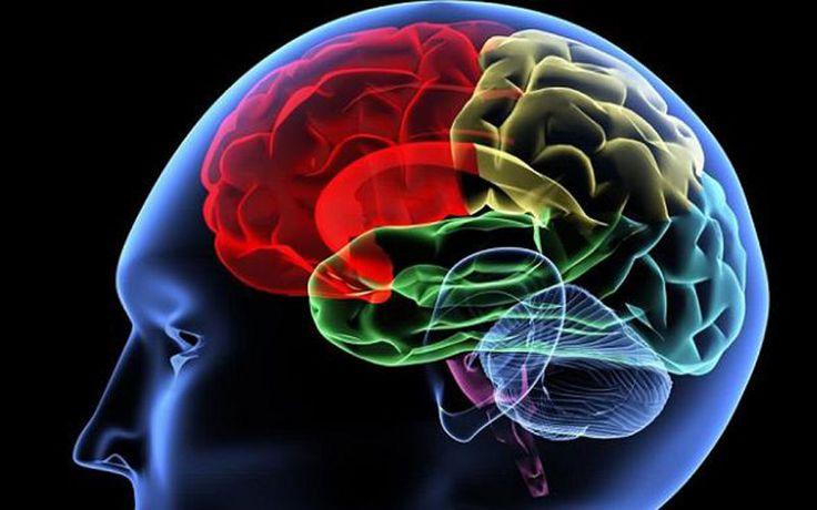 La inteligencia es la capacidad de relacionar conocimientos que poseemos para…