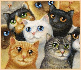 Randal Spangler ~ Fuzzy Fraternity