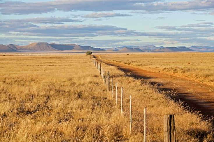 Karoo road in the Conway district between Cradock and Middelburg, Eastern Cape. South Africa