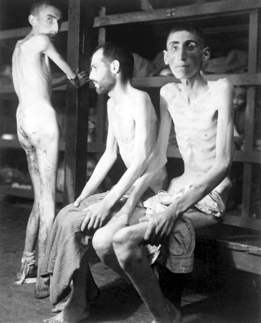 Russian, Polish, and Dutch slave laborers interned at the Buchenwald concentration camp with an average weight of 70 pounds, Germany April 1945.