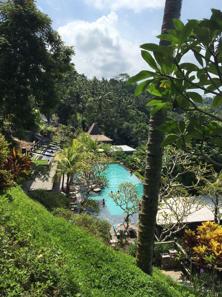 Un paysage de carte postale à Bali
