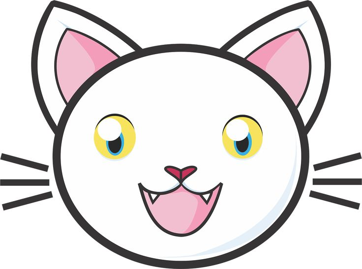 White Cat Kitty Cute Adorable transparent image