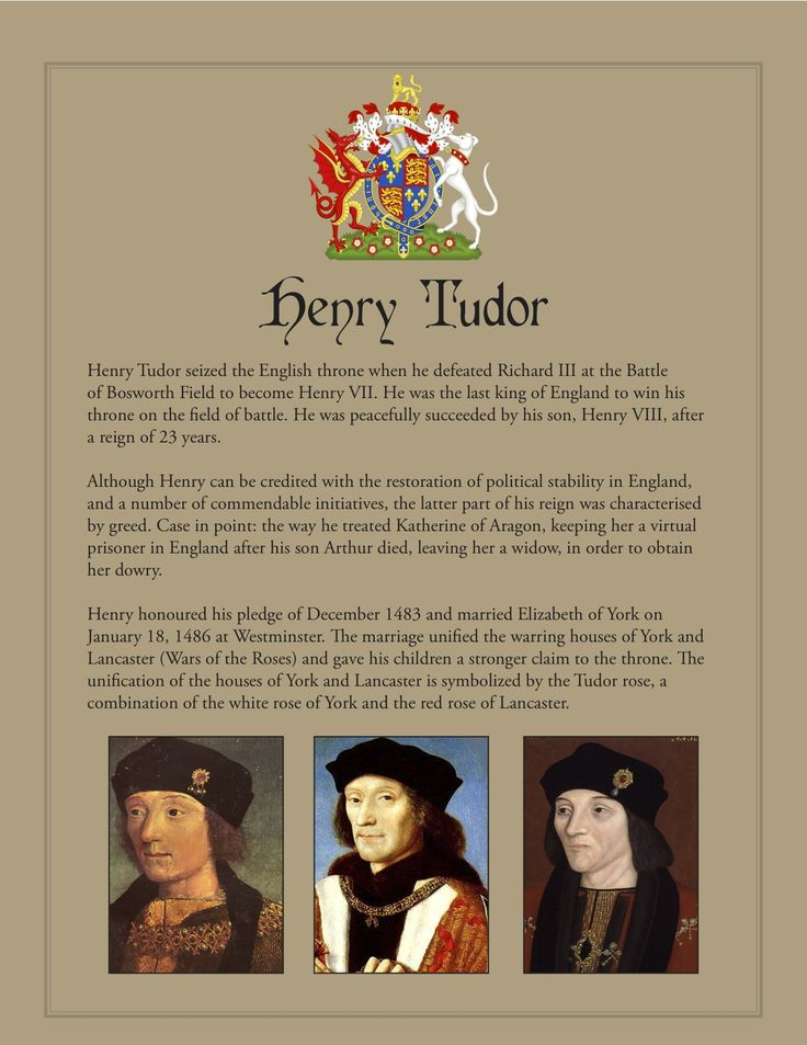 why did henry tudor won the battle of bosworth essay As we know, henry did not give many titles or lands to his supporters or relatives, as a result much more property was kept in the kings personal he was the first tudor king after defeating richard iii at the battle of bosworth in august 1485 the reasons why henry vii won the 1485 war essay.
