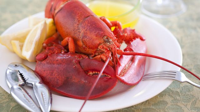Have you ever taste live Maine lobsters? They always taste better than the frozen ones.