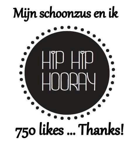 Hip hip hooray 750 likes! Mijn schoonzus en ik over haken en nog veel meer gezellige en hippe zaken www.facebook.com/mijnschoonzusenik