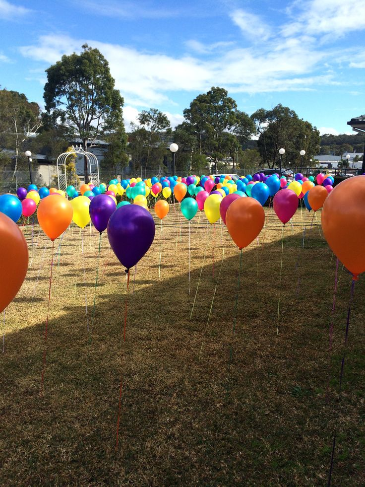 300 Balloons in our balloon garden. Looks amazing