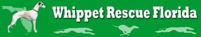 WhippetRescueFlorida  We accept all whippets, regardless of age, health or temperament. We also provide resources for whippets and greyhound adoptions.
