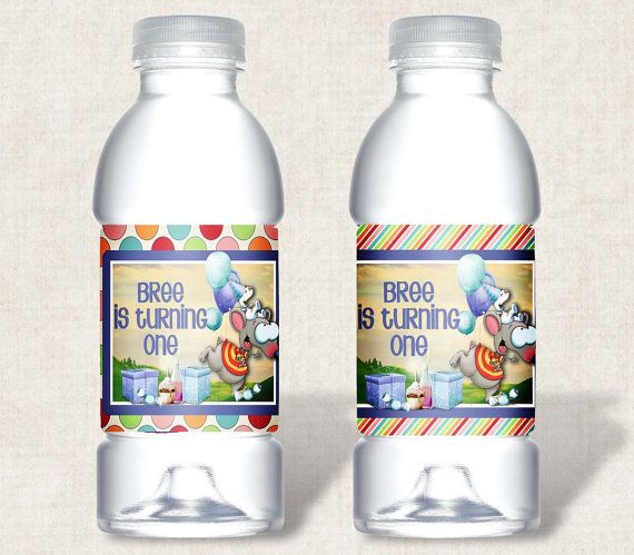 Toopy and Binoo Birthday Party Water bottle labels