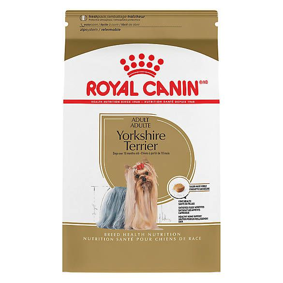 Royal Canin Breed Health Nutrition Trade Yorkshire Terrier Adult Dog Food Dry Dog Food Yorkshire Terrier Dog Food Recipes