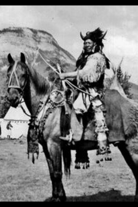 Walking buffalo on his horse