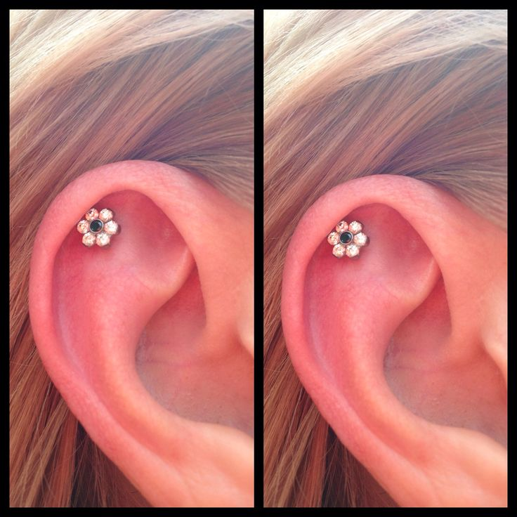 Fresh outer conch with cute cz flower from Industrial Strength