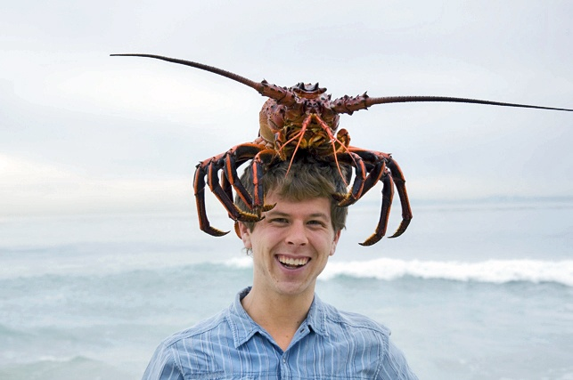 34 best california lobsters images on pinterest lobsters for Lobster fishing california