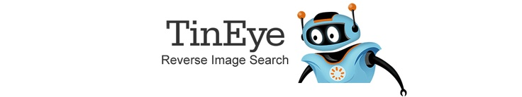 Reverse search web images: yours or web page