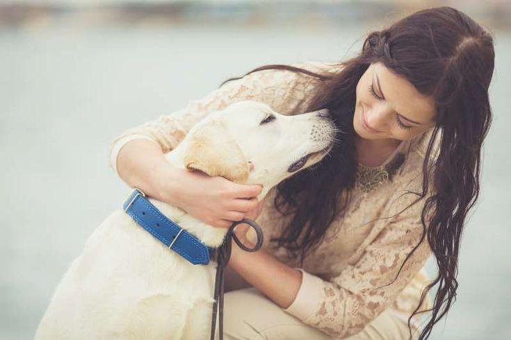 Τα σκυλιά βελτιώνουν την υγεία μας