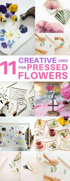 Cheap & EASY DIY pressed flower coasters, phone case, wall art, necklaces, wedding table numbers and more! Perfect for decorating your first apartment.