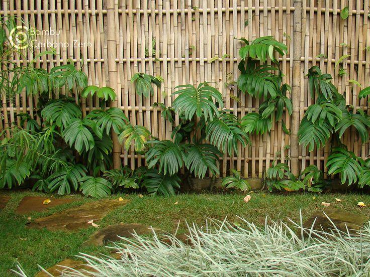 reguas aparelhadas bambu preço - Pesquisa Google
