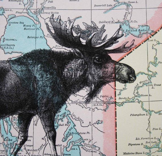 New moose on the loose! Moose print on vintage map (Canada), by CrowBiz, $15