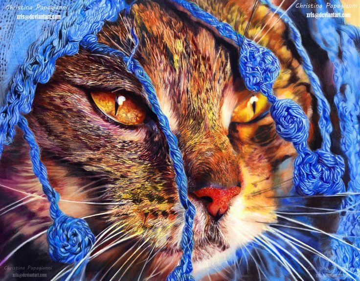 364 best Colored Pencil Animals images on Pinterest ... - photo#43