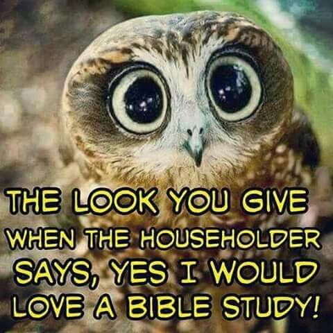 The look you give when the householder says, yes, I would love a Bible study!